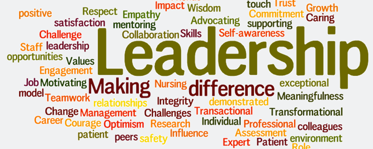 Leadership in a Health Context